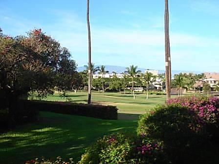 Maui Eldorado E-203