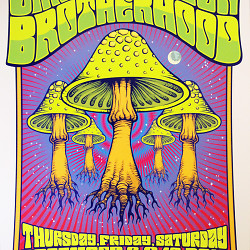 Fillmore Poster Art