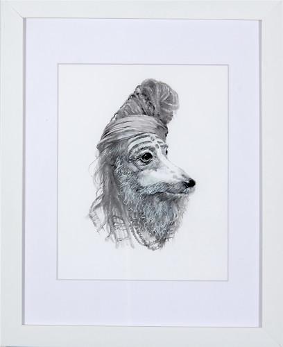 Baba Greyhound