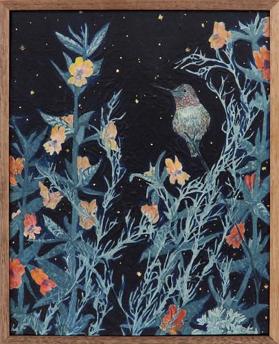 Hummingbirds Night