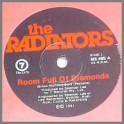 Room Full Of Diamonds by The Radiators