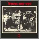 'burn my eye' by Radio Birdman