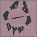 Subterfuge B/W Zeno Beach by Radio Birdman