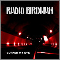 Burned My Eye B/W Photo Album by Radio Birdman