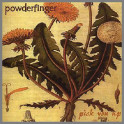 Pick You Up by Powderfinger