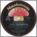 12-LB. Toothbrush B/W Country Blues by Madder Lake