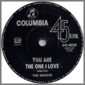 You Are The One I Love B/W Merry-Go-Round by The Groove