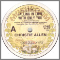 Falling In Love With Only You by Christie Allen