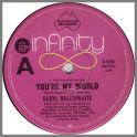 You're My World by Daryl Braithwaite