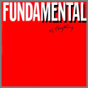 Fundamental As Anything by Mental As Anything