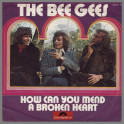 How Can You Mend A Broken Heart by The Bee Gees
