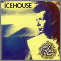 Great Southern Land by Icehouse (formerly Flowers)