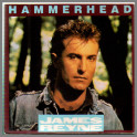 Hammerhead by James Reyne