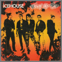 Touch The Fire by Icehouse (formerly Flowers)