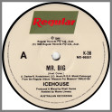 Mr Big by Icehouse (formerly Flowers)