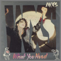 What You Need by INXS