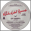 Say Goodbye by Hunters & Collectors