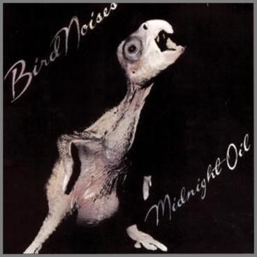 Bird Noises by Midnight Oil