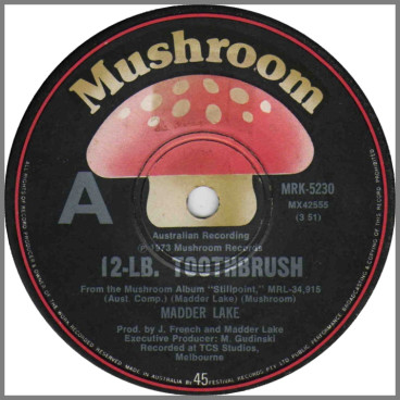 12-LB. Toothbrush B/W Country Blues by Madder Lake