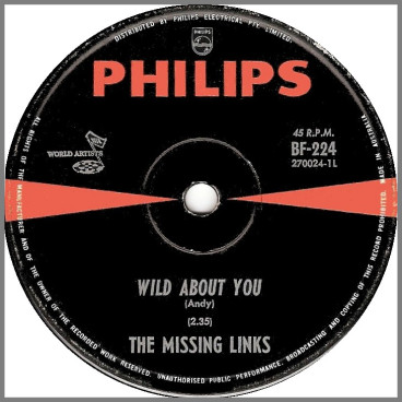Wild About You B/W Nervous Breakdown by The Missing Links