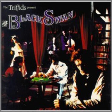 The Triffids Present The Black Swan by The Triffids