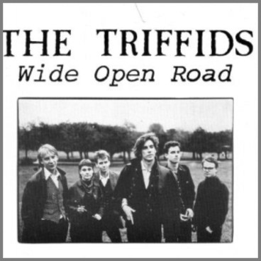 Wide Open Road by The Triffids