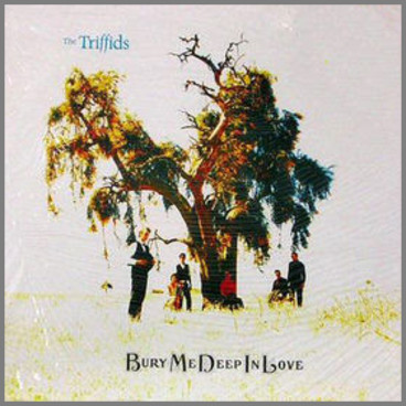 Bury Me Deep In Love by The Triffids