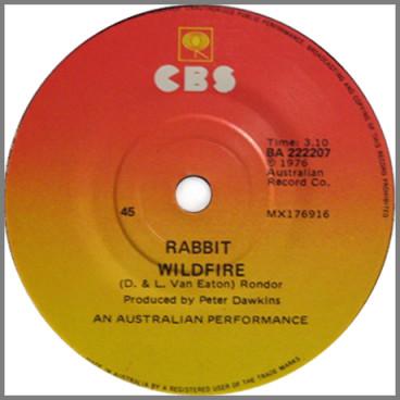 Wildfire B/W Bad Girls by Rabbit