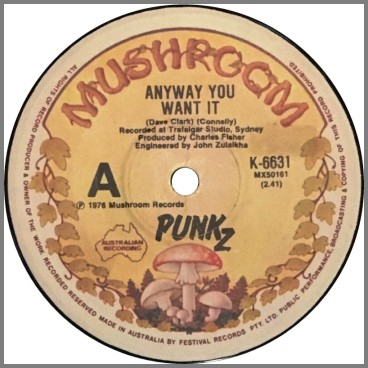 Anyway You Want It B/W I Can't Control Myself by Punkz