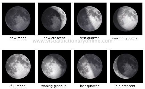 What causes the phases of the moon essay
