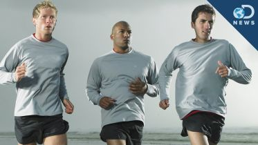 Physical Exercise - Effects on the Brain