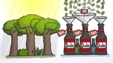 Biodiversity - in Nature and Economy