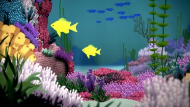 Coral Reef - Protection
