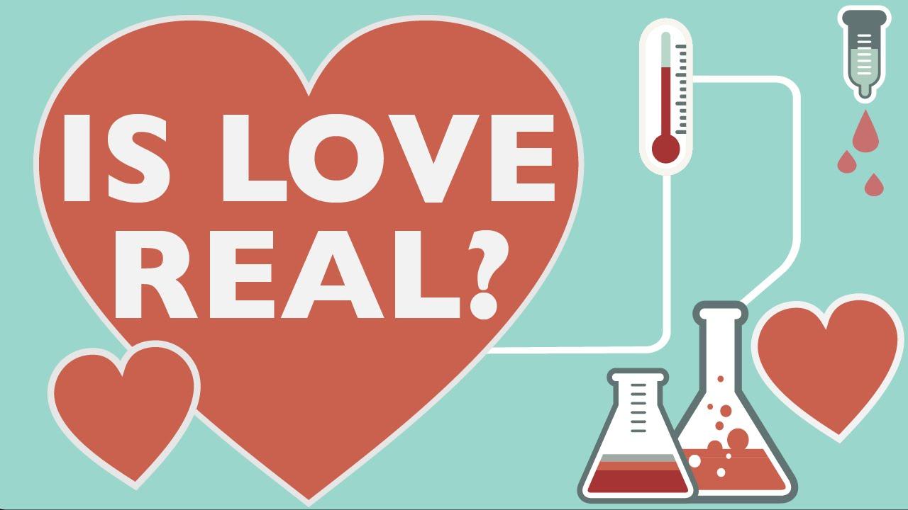 Brain - Chemistry of Love