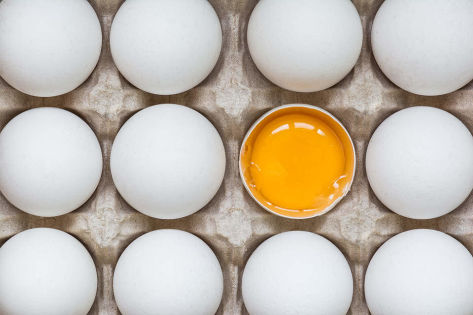 Trend: Nutrient diversity goes beyond meatless meat