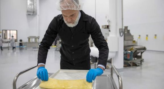 Nature's Fynd (formerly Sustainable Bioproducts) raises $80m to grow food from microbes