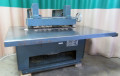 USED DIEHL STRAIGHT LINE RIP SAW MODEL SL52