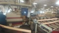 Used Raimann Automatic High Performance Optimizing Gang Rip Saw with 2 movable heads,  Type
