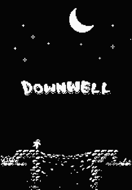 2791508-downwell