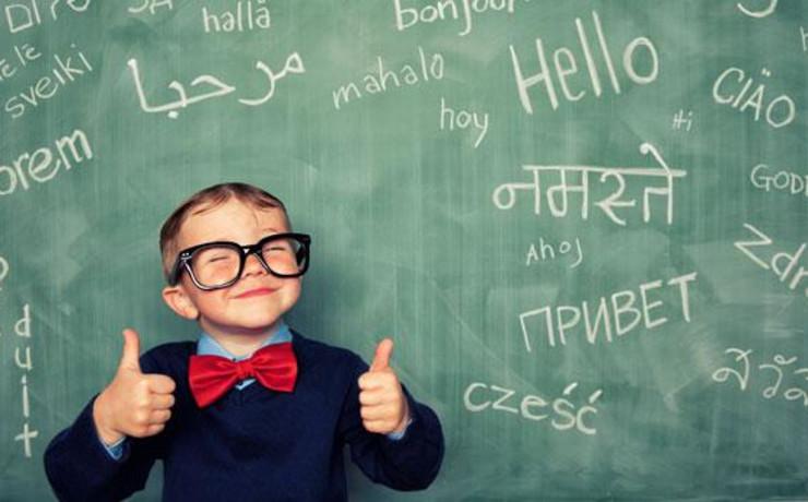 Matematika, instruktivna nastava i priprema za eksternu maturu