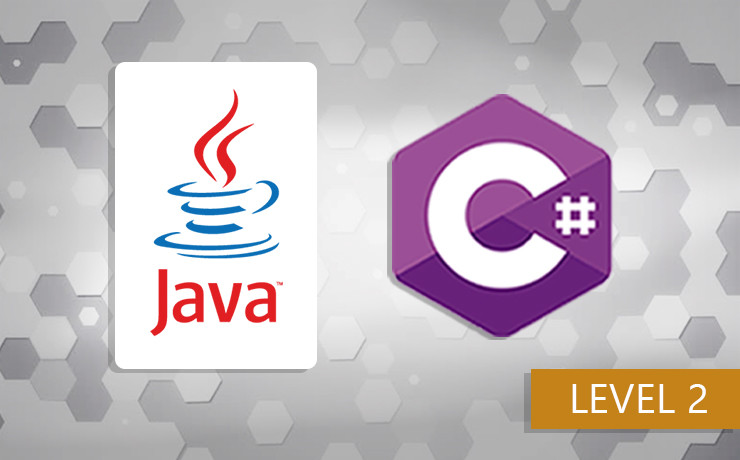 Intermediate C# and Java programming course