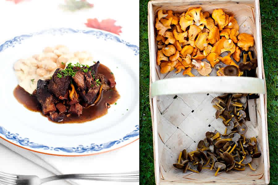 Rådjursgryta med rökt sidfläsk, kantareller och gräddkokta bönor