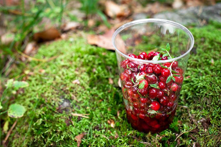 Rårörda tranbär