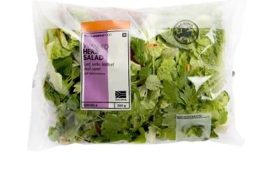 Pays for Salad, Brings Home Huntsman Spider