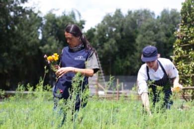 A 'farm to table' ethos