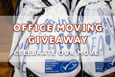 Moving Office Giveaway