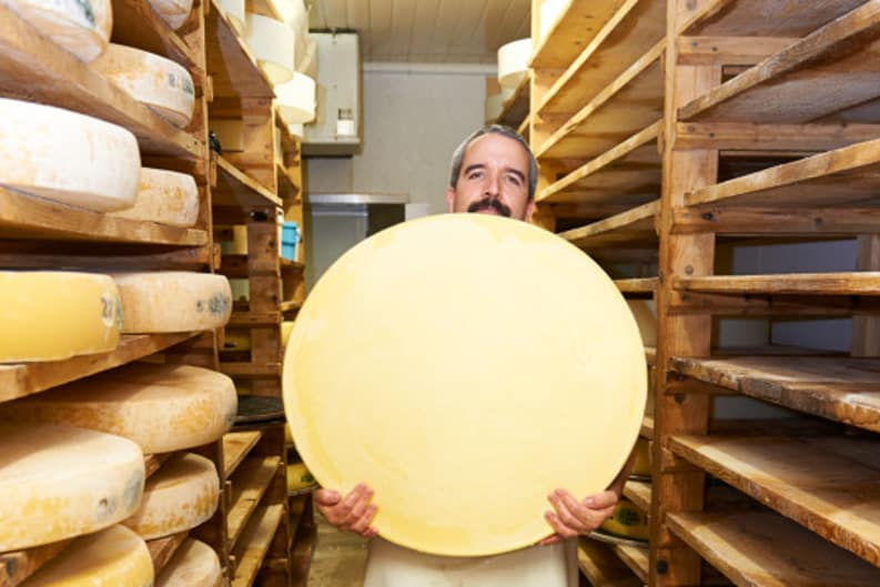 The Wheel Reasons Why Cheese is Round #cheeselovers #funfact