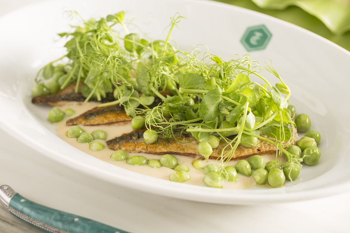 Griddled Mackerel with Peas, Pea Shoots and Green Apple Purée