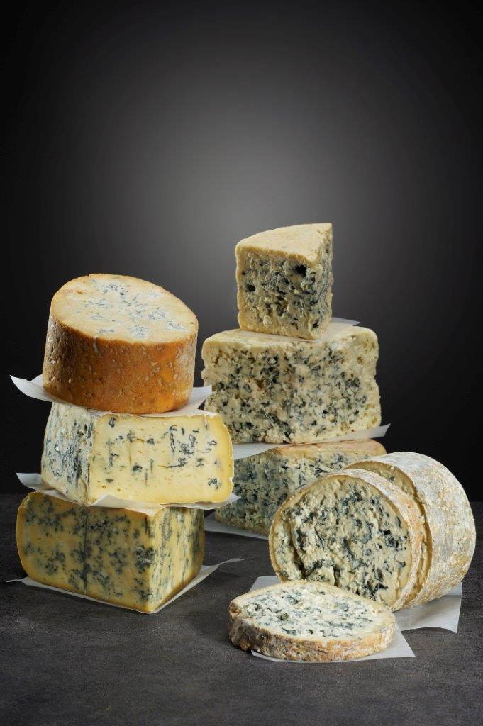 Blue cheese family