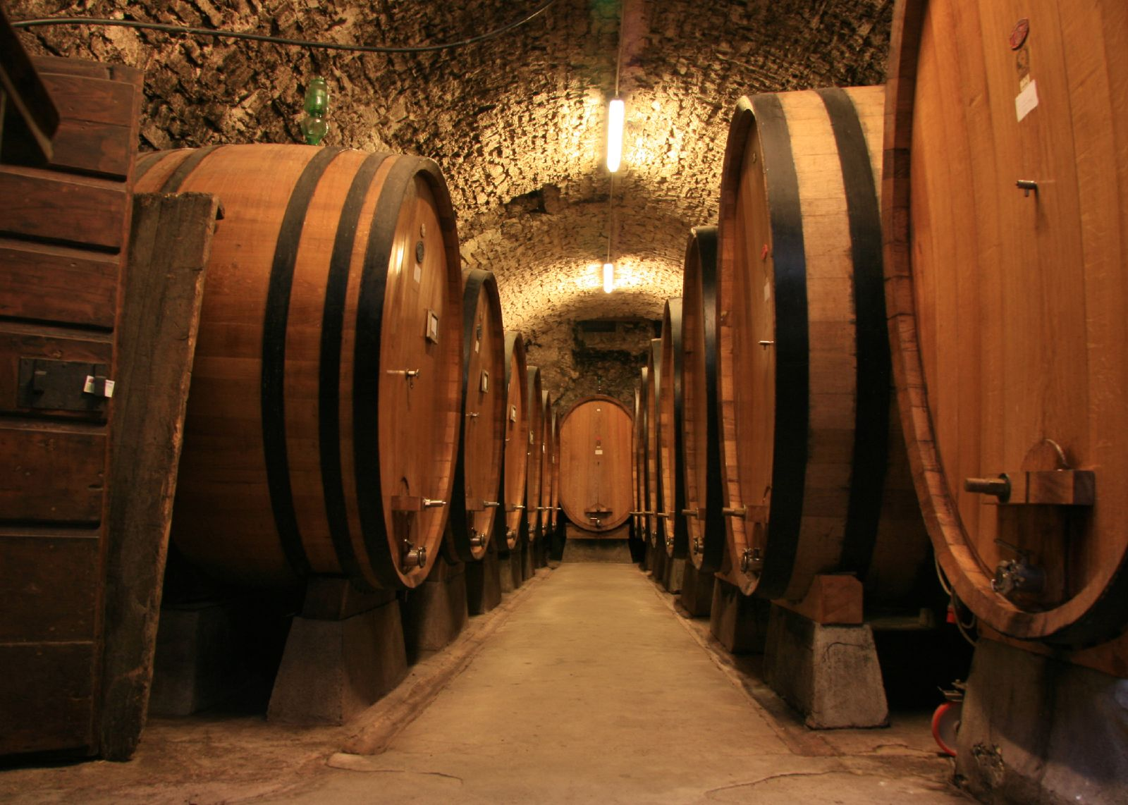 Oak Barrels used in Fermentation Process of Cabernet Sauvignon